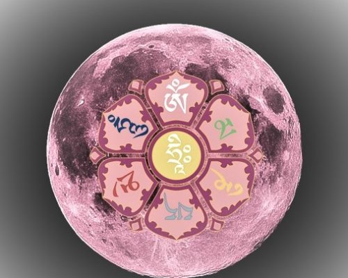 Full Pink Scorpio Super Moon
